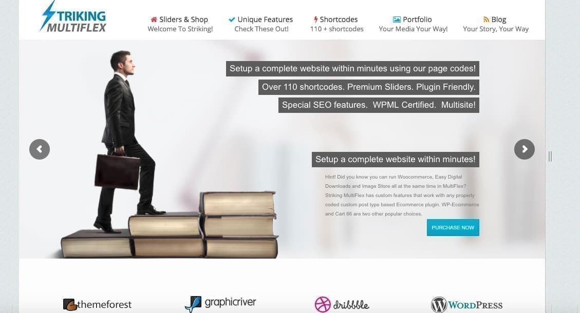 thème WordPress striking